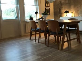 Bild för referens Hos familjen Wass i Ljungby